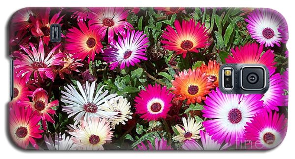 Brilliant Flowers Galaxy S5 Case by Chalet Roome-Rigdon