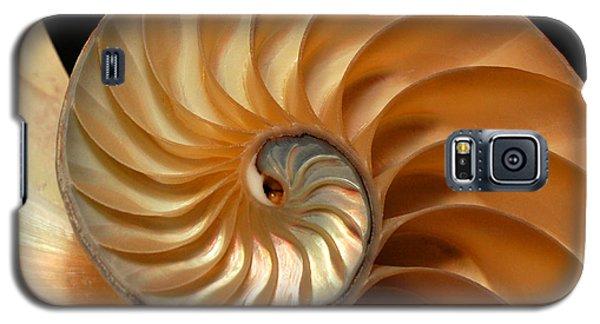 Brilliant Nautilus Galaxy S5 Case by Phil Cardamone