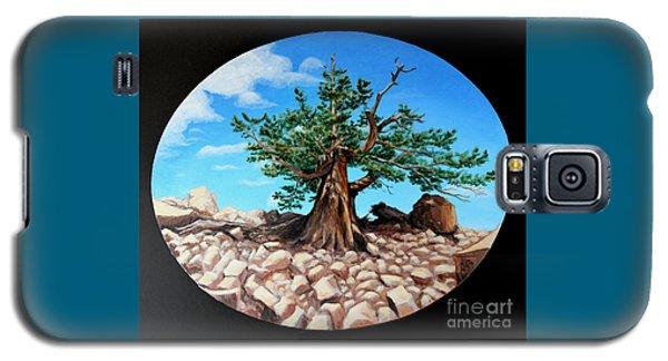 Bristlecone Pine Galaxy S5 Case