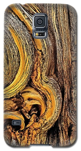 Galaxy S5 Case featuring the photograph Bristlecone Pine Bark Detail White Mountains Ca by Dave Welling