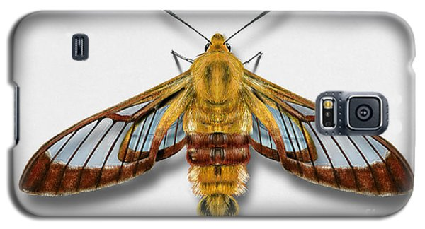 Broad-bordered Bee Hawk Moth Butterfly - Hemaris Fuciformis Naturalistic Painting -nettersheim Eifel Galaxy S5 Case
