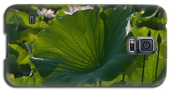 Broad Lily Leaf Galaxy S5 Case