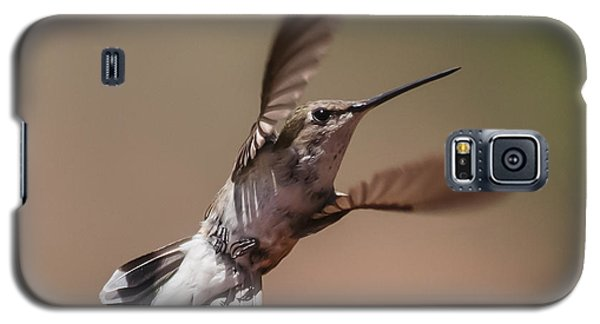 Broad-tailed Hummingbird 2 Galaxy S5 Case