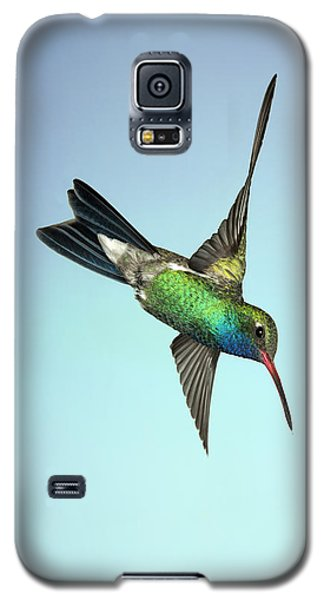 Galaxy S5 Case featuring the photograph Broadbilled Hummingbird - Phone Case Design by Gregory Scott