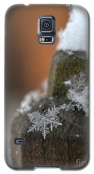 Broken Dream Galaxy S5 Case by Lila Fisher-Wenzel