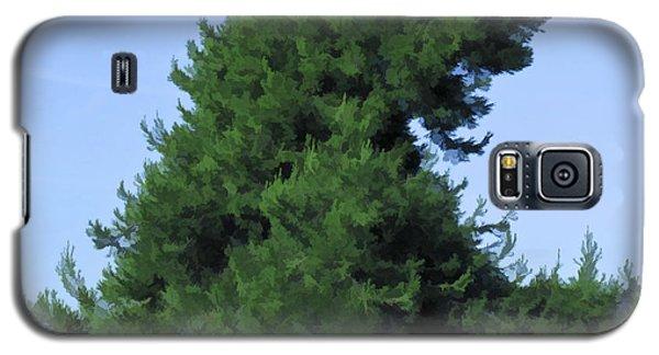 Broken Hill Overlook At Torrey Pines Galaxy S5 Case