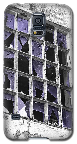 Broken Windows With Birds Galaxy S5 Case