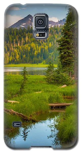Brokentop Peek-a-boo Galaxy S5 Case