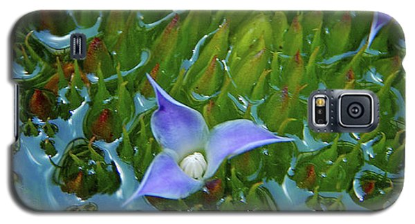Bromeliad Pond Galaxy S5 Case by Jocelyn Kahawai