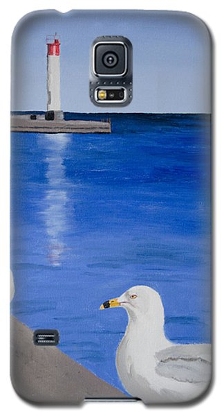 Bronte Lighthouse Gulls In Oil Galaxy S5 Case