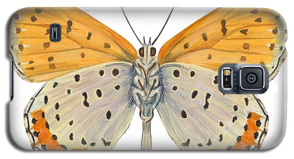 Bronze Copper Butterfly Galaxy S5 Case
