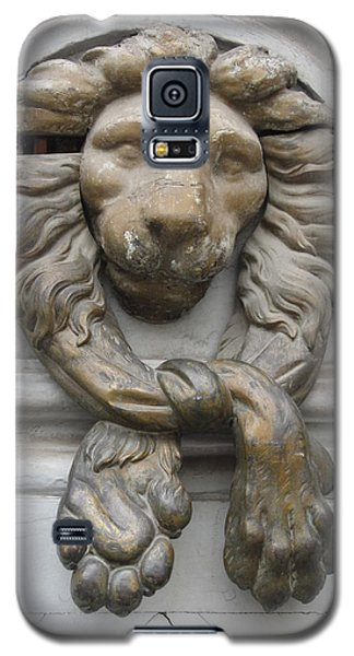 Galaxy S5 Case featuring the photograph Bronze Lion by Pema Hou