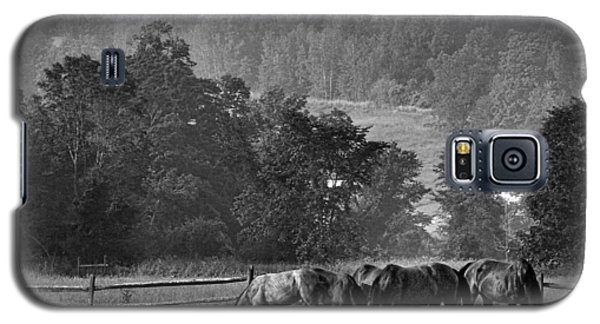 Galaxy S5 Case featuring the photograph Broodmares by Joan Davis