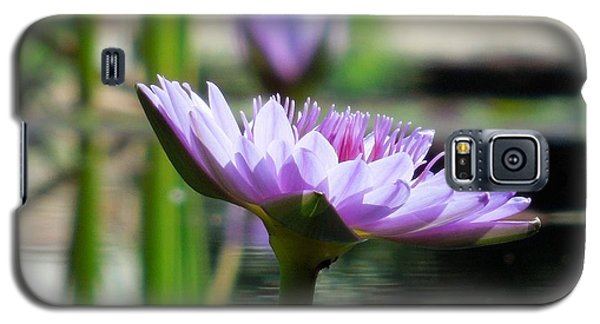 Brookgreen Garden Water Lily Galaxy S5 Case by Chad and Stacey Hall