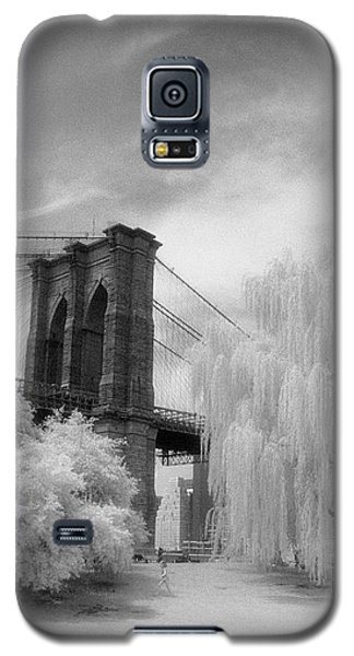 Brooklyn Bridge Willows Galaxy S5 Case by Dave Beckerman