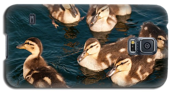 Galaxy S5 Case featuring the photograph Brothers And Sisters by Brenda Jacobs