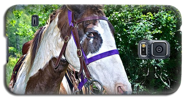 Galaxy S5 Case featuring the photograph Brown And White Horse by Susan Leggett