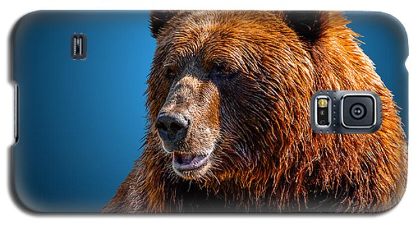 Brown Bear 2 Galaxy S5 Case