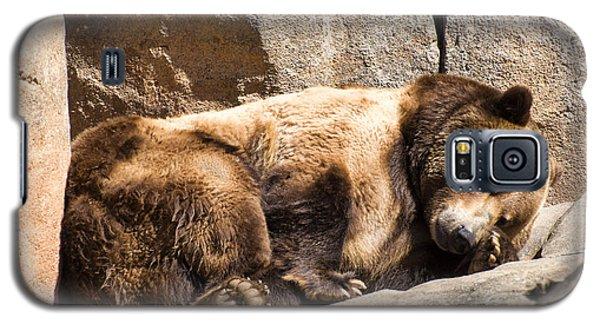 Brown Bear Asleep Again Galaxy S5 Case