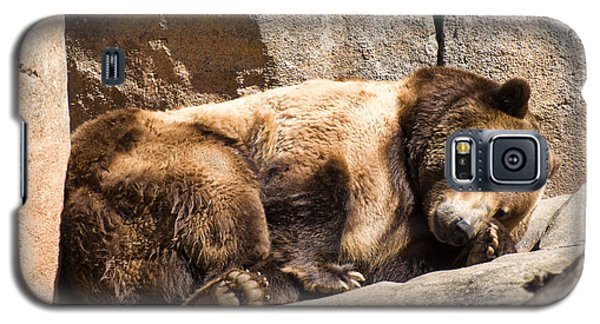 Brown Bear Asleep Again Galaxy S5 Case by Chris Flees