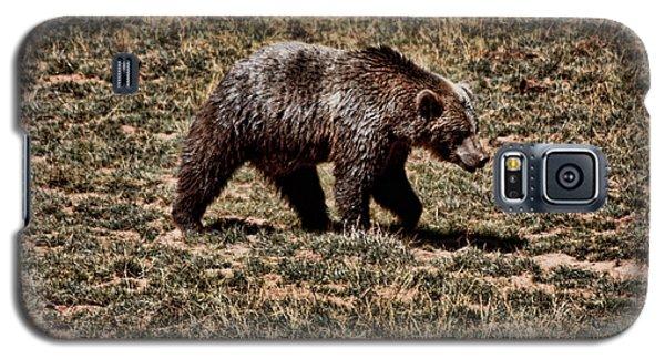 Galaxy S5 Case featuring the photograph Brown Bears by Angel Jesus De la Fuente