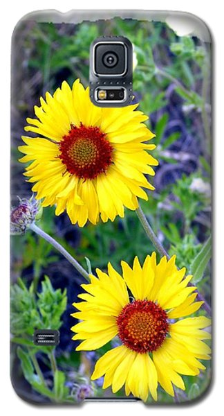 Brown- Eyed Susans Galaxy S5 Case