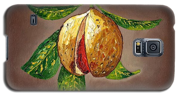 Galaxy S5 Case featuring the painting Brown Glow Nutmeg by Laura Forde