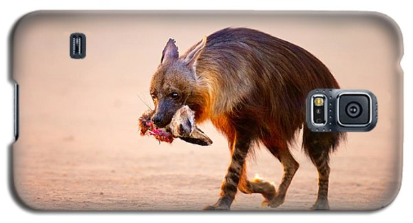 Bat Galaxy S5 Case - Brown Hyena With Bat-eared Fox In Jaws by Johan Swanepoel