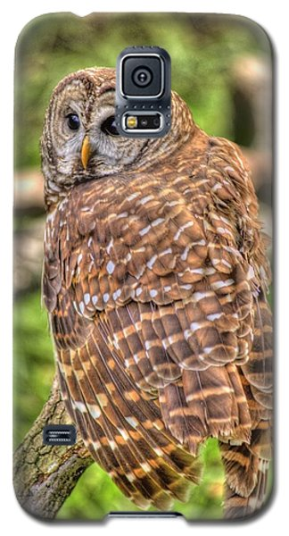 Galaxy S5 Case featuring the photograph Brown Owl by Donald Williams