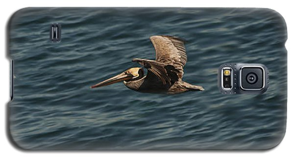 Brown Pelican Flying Panorama Galaxy S5 Case