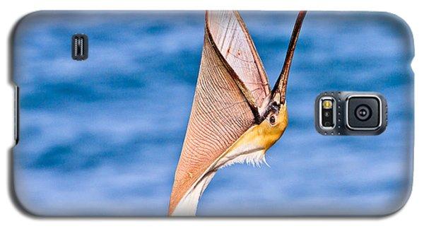 Brown Pelican - Head Throw Galaxy S5 Case