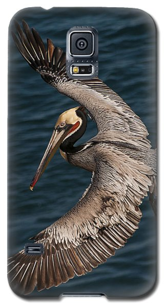 Brown Pelican Landing 2 Galaxy S5 Case