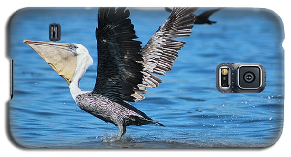 Brown Pelican Landing Galaxy S5 Case