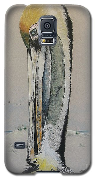 Brown Pelican  Galaxy S5 Case