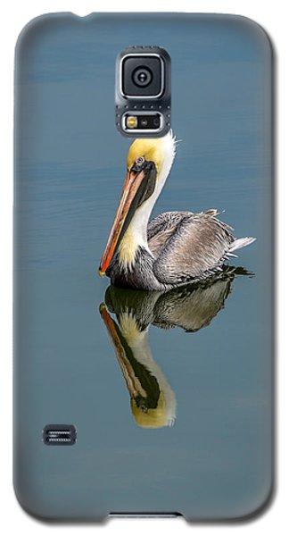 Brown Pelican Reflection Galaxy S5 Case