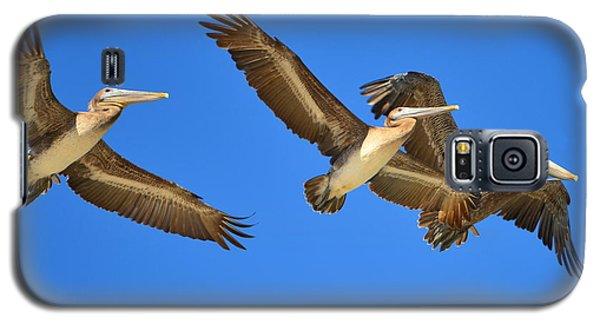 Galaxy S5 Case featuring the photograph Brown Pelicans In Flight by Debra Martz