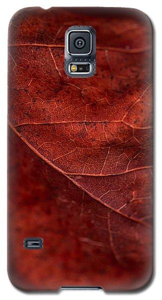 Brown Texture Galaxy S5 Case