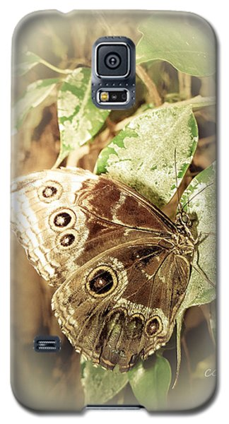 Brown Toned Butterfly Galaxy S5 Case