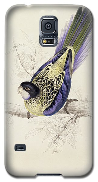 Browns Parakeet Galaxy S5 Case by Edward Lear