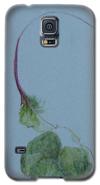 Brussel Sprouts And Beet Leaf Galaxy S5 Case