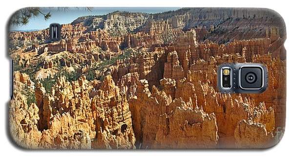 Bryce Afternoon Galaxy S5 Case