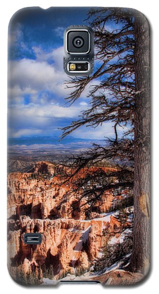 Bryce Canyon 1 Galaxy S5 Case by Marti Green