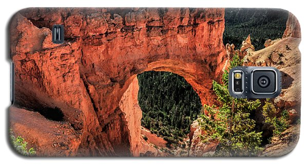 Bryce Canyon Arches Galaxy S5 Case