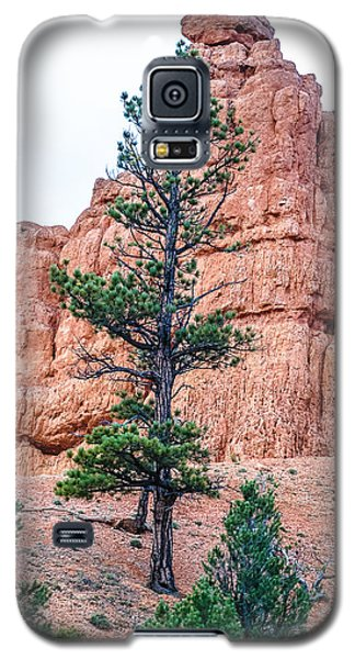 Galaxy S5 Case featuring the photograph Bryce Canyon Lan468 by G L Sarti
