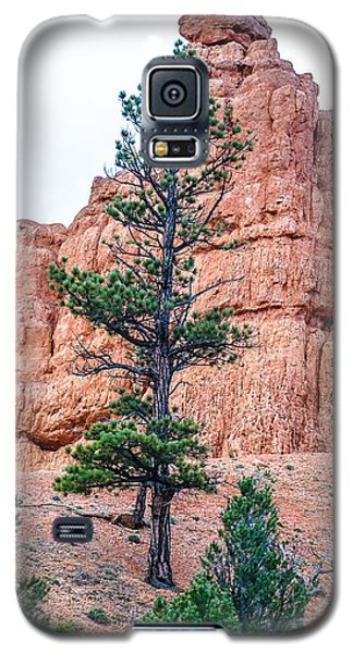 Bryce Canyon Lan468 Galaxy S5 Case