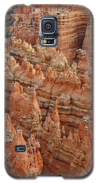 Bryce Canyon National Park Formations With Trees Galaxy S5 Case