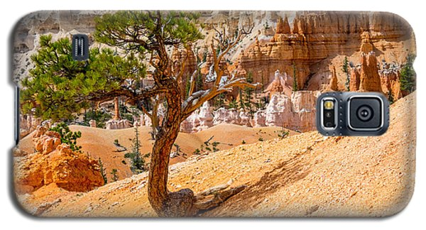 Bryce Canyon Np Galaxy S5 Case by Juergen Klust