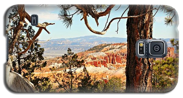 Bryce Canyon Through The Trees Galaxy S5 Case