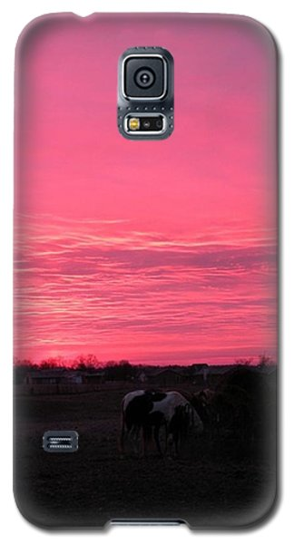 Galaxy S5 Case featuring the photograph Bubble Gum Sunrise by Carlee Ojeda
