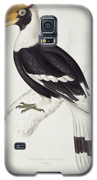 Great Hornbill Galaxy S5 Case by John Gould